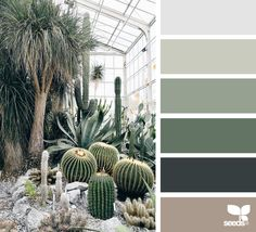 My photo on Design Seeds (in the pic the Sukkulentensammlung in Zürich). I love this website full of color palettes posted daily for all who love color. Green Colour Palette, Green Colors, Colours, Design Seeds, Colour Schemes, Color Combos, Colour Trends, Room Colors, House Colors