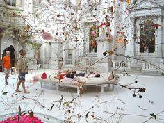 Fallen Garden, Venedig