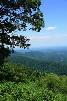 Blue Ridge Mountains - Virginia. Summertime view from scenic Blue Ridge Parkway. Follow the pin to my Website!