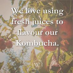 Only the freshest 👌 and highest quality! Kombucha, Brewing, Fresh, Instagram