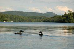 Lake Ozonia in the Adirondacks Kayaking, Camping, Vacation, Mountains, Places, Photography, Travel, Random Stuff, Cottage