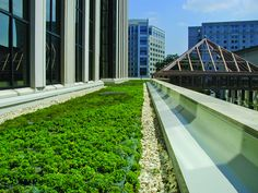 A recent study conducted by the Environmental Protection Agency (EPA) has found that cool, green and hybrid roofs can offset warming in urban environments. EPA finds new roofing options reduce impact of global climate change The EPA published their f Roofing Options, Roofing Systems, Landscape Architecture, Landscape Design, Architecture Design, Green Architecture, Flood Prevention, Urban Heat Island, Residential Roofing