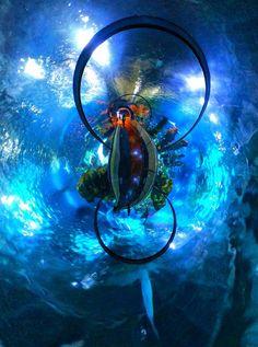 Dream path in Aquarium Barcelona by MikkoTyllinen
