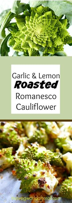 Garlic and Lemon Roasted Romanesco Cauliflower - a delicious and simple vegetable dish using beautiful romanesco cauliflower! Garlic and Lemon Roasted Romanesco Cauliflower - a delicious and simple vegetable dish using beautiful romanesco cauliflower! Healthy Vegetable Recipes, Vegetarian Recipes, Vegetarian Cooking, Healthy Tips, Healthy Meals, Healthy Food, Healthy Eating, Paleo, Romanesco Broccoli