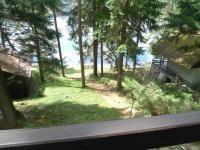 Chata v lese na břehu jezera, Lojzovy Paseky Lipno Jezera, Tours, Plants, Plant, Planets