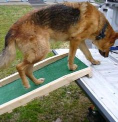 Low cost dog ramp plans for easy-to-build, portable, folding wooden ramps. Designed by an engineer. Dog Ramp For Truck, Dog Ramp For Stairs, Pet Ramp, Ramp For Dogs, Wooden Ramp, Pet Steps, Diy Stuffed Animals, Big Dogs, Dog Care