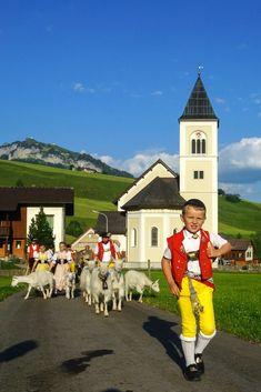 Alpauffahrt, Photo by Hans Zürcher, Teufen, Switzerland
