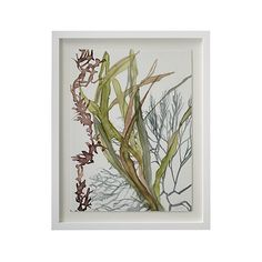A study of motion, texture and pattern, this painting by Alexandra White gives fluid form to underwater plants in constant motion. By applying watered-down inks on nonporous drafting film, she exaggerates the transparency and fluidity of her medium, which invests her marks with a sense of organic spontaneity. White's soft color and free brushwork are brilliantly captured in this giclée print on paper. The print floats on a white mat with a simple, wood frame painted matte white.