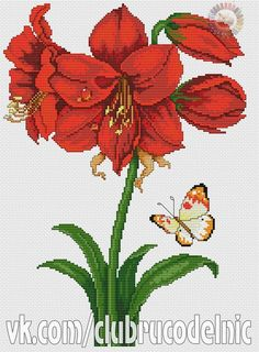 1 million+ Stunning Free Images to Use Anywhere Cross Stitch Heart, Cross Stitch Flowers, Cross Stitch Designs, Cross Stitch Patterns, Cross Stitching, Cross Stitch Embroidery, Amarillis, Free To Use Images, Flower Coloring Pages