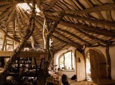 decor, fantastical, home, interior, natural, rooms - inspiring picture on Favim.com