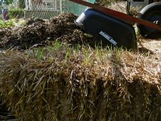 Hay vs. Straw in garden.  Interesting, I can never remember what to us.  I already have straw for the chickens though