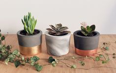 Products | Home Decor by Yano Designs - Designed & made with ♥ in Melbourne, Australia | Handmade Concrete Plant Pots