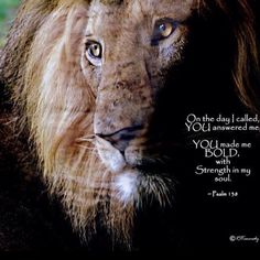Psalm 130 ~ On that day I called You answered me, You made me bold with strength in soul...