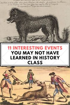 An unknown beast that led a deadly rampage through France? These interesting events bring history to life more than any textbook ever could. History Class, Interesting Facts, Body Art Tattoos, Textbook, Fun Facts, Teeth, Larger, Funny Jokes, Beast