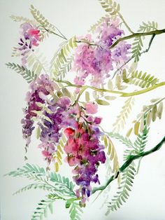 watercolor painting of wisteria | Wisteria, original watercolor painting, large size 15 X 20 in ...