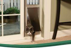 Cat door google search cat doors pinterest doors and cat sliding door cat door planetlyrics Images