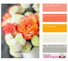 Fun tangerine palate! Energizing warms and relaxing cools