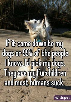 """If it came down to my dogs or 99% of the people I know, I'd pick my dogs. They are my furchildren and most humans suck. """