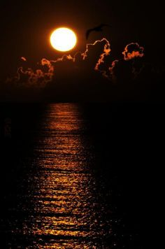 Stunning golden sunset