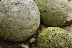Hypertufa- Brush milk or yogurt to encourage moss growth.