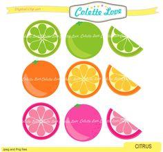 Cetrus clip art  lemon clip artsummer fruit clip by Colettelove