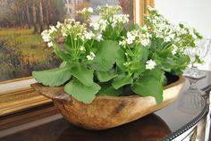 Use an old wooden dough bowl as a planter. Via The Enchanted Home.