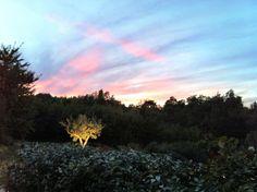 Sunset at Bonnieux