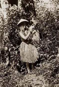 Above we show a moving photo of Quinault Berry Picker. It was made in 1913 by Edward S. Curtis.    The illustration documents Quinault Indians.    We have compiled this collection of artwork mainly to serve as a vital educational resource. Contact curator@old-picture.com.