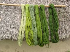 Saga i farver - reed flowers pre fluff Natural Dye Fabric, Natural Dyeing, Textiles, Iron Age, How To Dye Fabric, Hand Dyed Yarn, Yarn Colors, Shibori, Knitting Yarn