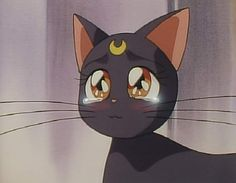 Luna crying