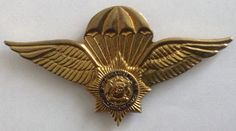 SA Police 1st type parachute wing