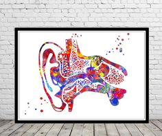 Throat Anatomy, Ear Anatomy, Anatomy Art, Vestibular System, Inner Ear, Medical Art, A Level Art, Art Base, Notebooks