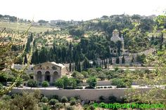 Jerusalem, Israel  The Mt of Olive and at the foot of this  picture is the Garden of Gethsemenie