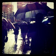 雨の日のような晴れの日のような
