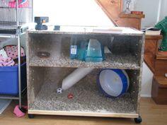 hedgehog cage sterilite - Google Search