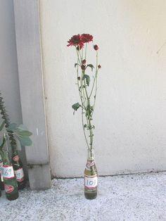 Chrysamthemum Chrysanthemum, Glass Vase, Bottle, Flowers, Home Decor, Chrysanthemums, Bouquets, Decoration Home, Room Decor