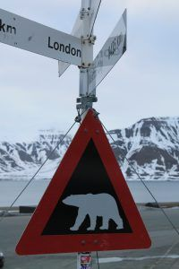 Watch out for polar