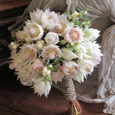 Inspiration and ideas for wedding and bridal flowers. Proteas are a great flower to include in your bridal bouquet and centerpieces. Pink Flower Bouquet, Protea Bouquet, Protea Flower, Blush Bouquet, Bridal Flowers, Protea Wedding, Bush Wedding, Bouquet Wedding, Wedding Favors