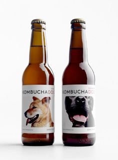 Kombucha dog packaging design