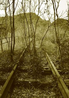 鉄道廃線跡を訪ねて