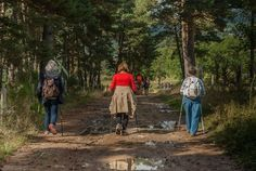 Pourquoi marcher est bon pour la santé - - www.relax-mas.fr Hiking Gear, Hiking Trails, Ottawa River, Forest Conservation, Forest Trail, The Camino, Seasons Of Life, Cross Country Skiing, Walking By