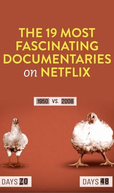 The 19 Most Fascinating Documentaries On Netflix