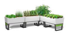 Amazon.com : GlowPear Urban Garden Self-Watering Planter : Patio, Lawn & Garden