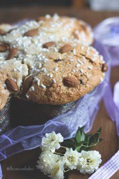il bosco di alici: Colomba al cioccolato a lievitazione naturale