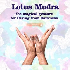 3 Hand Gestures - Mudras for Magic - Magical Recipes Online Chakra Meditation, Kundalini Yoga, Chakra Healing, Meditation Exercises, Yoga Mantras, Vedic Mantras, Spiritual Health, Spiritual Wisdom, Hand Mudras
