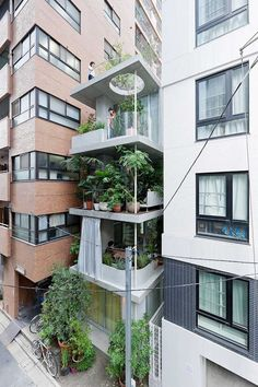 Micro house Garden House Tokyo by Ryue Nishizawa SANAA / Photo © Iwan Baan | Yellowtrace