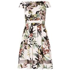 Tropical print fit and flare Dress ($69) ❤ liked on Polyvore featuring dresses, pink dress, dorothy perkins, dorothy perkins dress, pink fit-and-flare dresses and fit flare dress