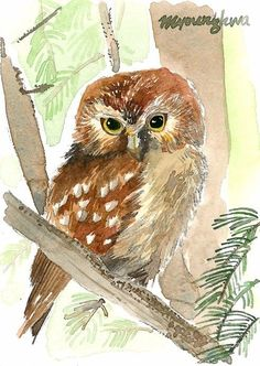 ACEO Limited Edition- Nite owl   - Art print of an ACEO watercolor #Realism