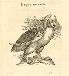 A Harpy from Monstrorum Historia