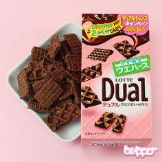 Lotte Dual Chocolate & Wafers